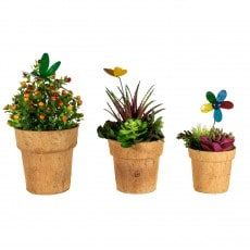 Cocopots Spring Time (Set of 3) x 4