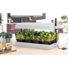 Drivbänk Garland Grow Light Vit