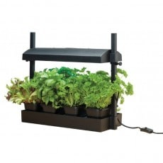 Drivbänk Garland Micro Grow Light Svart