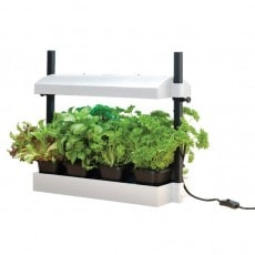 Drivbänk Garland Micro Grow Light Vit